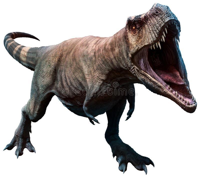 Tyrannosaurus wokoło gryźć 3D ilustrację ilustracji