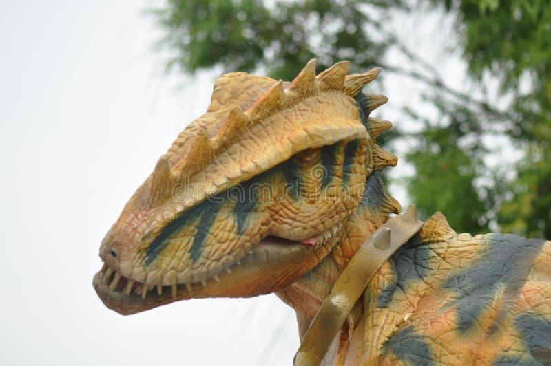 TyrannosaurusRex dinosaur royaltyfri bild