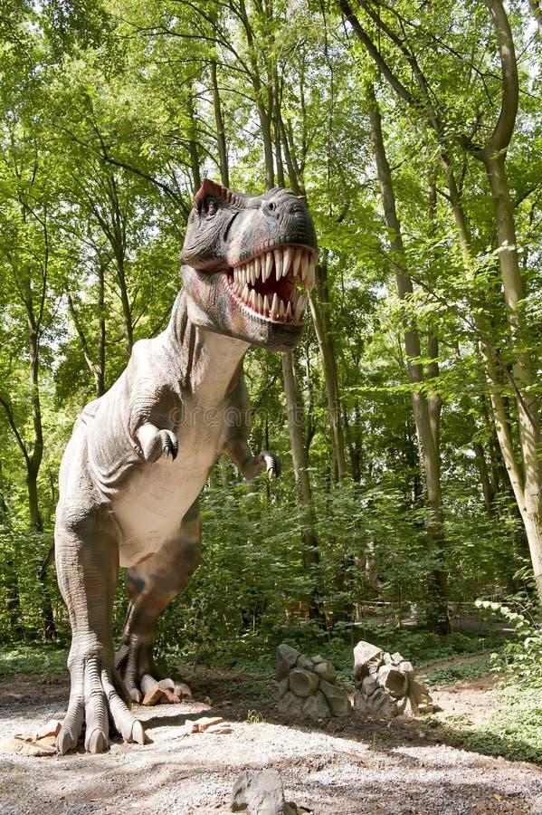 tyranozaur стоковые изображения