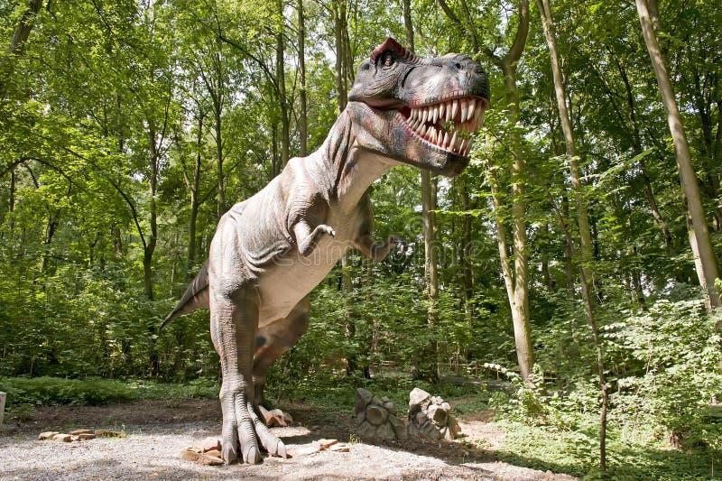 Tyranozaur fotos de archivo