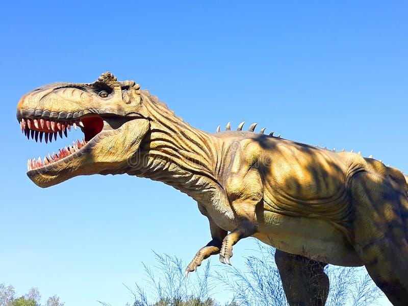 Tyranozaur w rex dinozaur gada dziki park jurajski gotowy do ataku zdjęcie royalty free