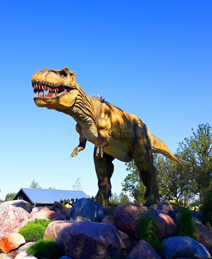 Tyranozaur w rex dinozaur gada dziki park jurajski gotowy do ataku zdjęcie stock