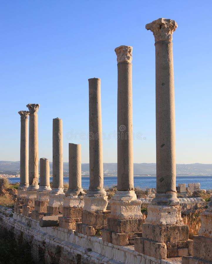 Tyre Roman Columns at Sunset (Lebanon) stock photography
