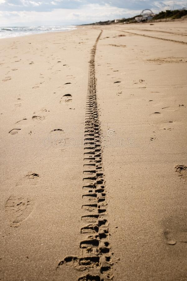 Tyre tracks. Disappearing into the horizon on a golden sand beach. Puglia region, Italy stock photography