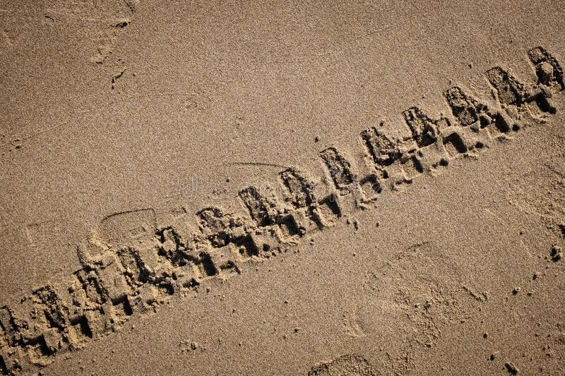 Tyre tracks. On a golden sand beach. Puglia region, Italy royalty free stock photography