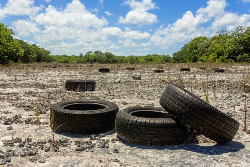 tyres στοκ εικόνα