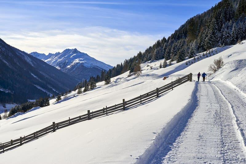 Tyrol Alps zimy krajobraz: śnieżysta wsi droga na wzgórze skłonie, dwa ludzie chodzi zdjęcie royalty free