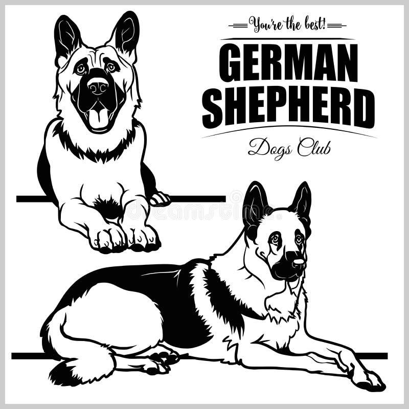 Tysk herde - isolerad illustration för vektor uppsättning på vit bakgrund royaltyfri illustrationer