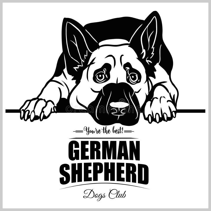 Tysk herde - vektorillustration f?r t-skjorta, logo- och mallemblem stock illustrationer