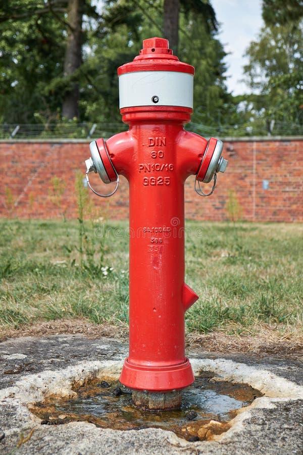 Tysk röd brandpost i en parkera med två slangkontaktdon och BULLER 80 som är skriftligt på det royaltyfria foton