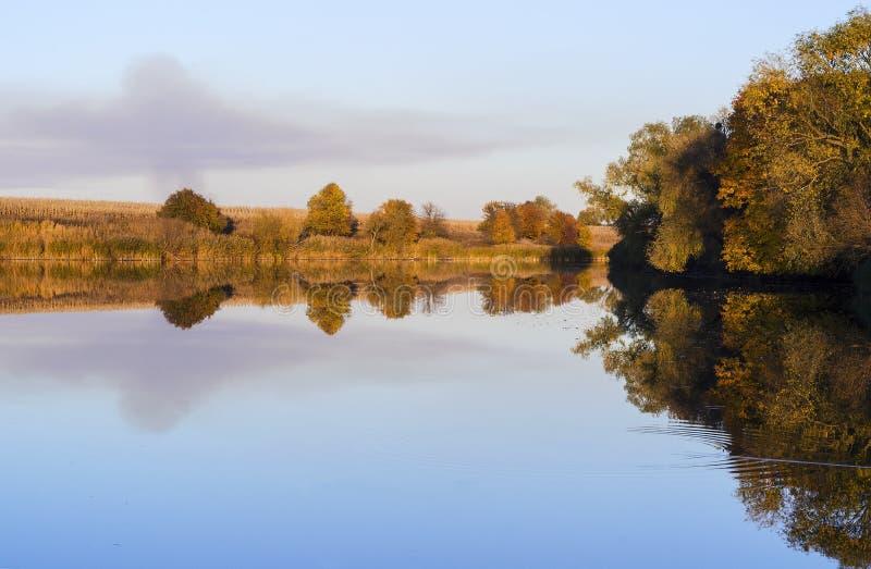 Tyst damm med reflexionen av kusten royaltyfria foton