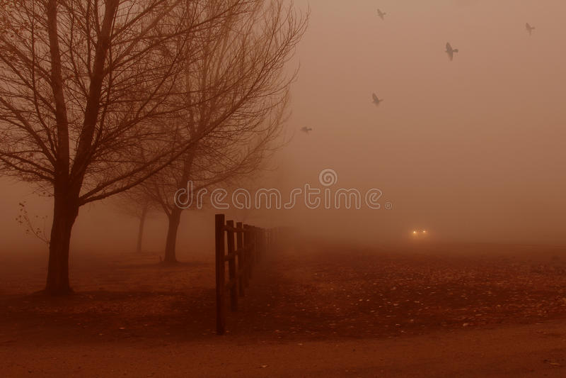 Tyst dimma. royaltyfri foto