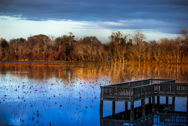 tyst lake royaltyfri bild