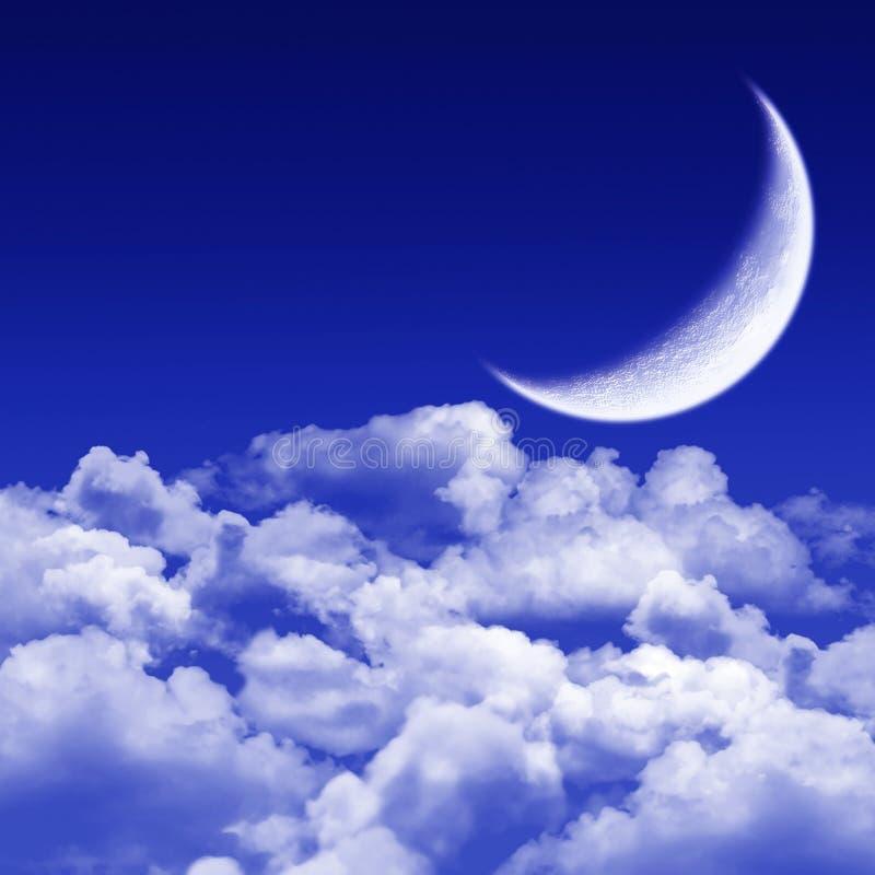 tyst månbelyst natt royaltyfri illustrationer