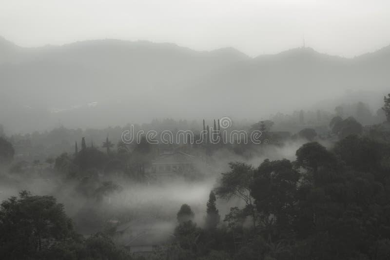 Tyst morgon i den Bali stranden royaltyfria bilder