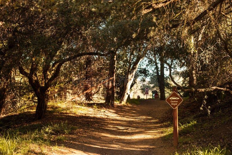Tyst och fridsam Franklin Canyon vandring i Beverly Hills, Kalifornien Parkera som lokaliseras nära Benedict Canyon på royaltyfri bild