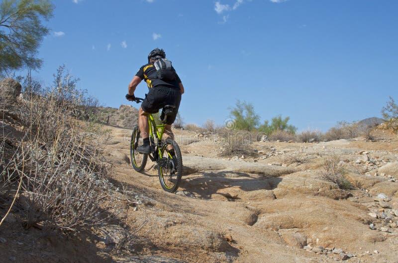 Tyst söndag cyklist fotografering för bildbyråer