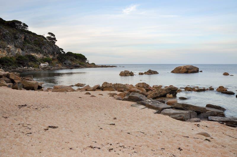 Tyst strand på Shelley Cove royaltyfri foto