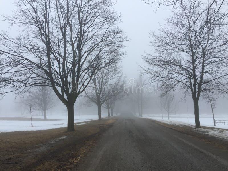 Tyst väg på en knaprig vinterdag arkivfoton