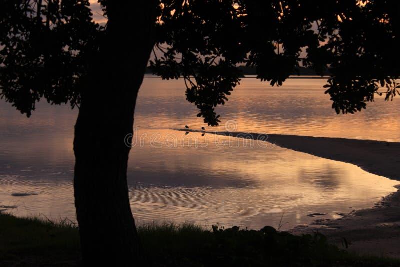 Tysta Tid för soluppgång arkivbild