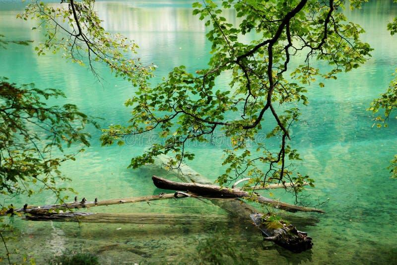 Tystnad klar sjö arkivbild
