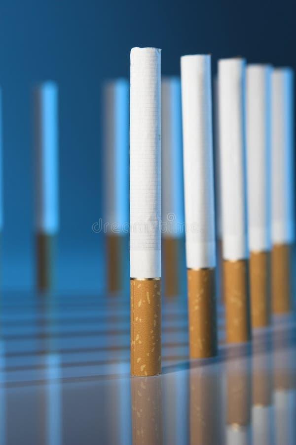tytoń obraz stock