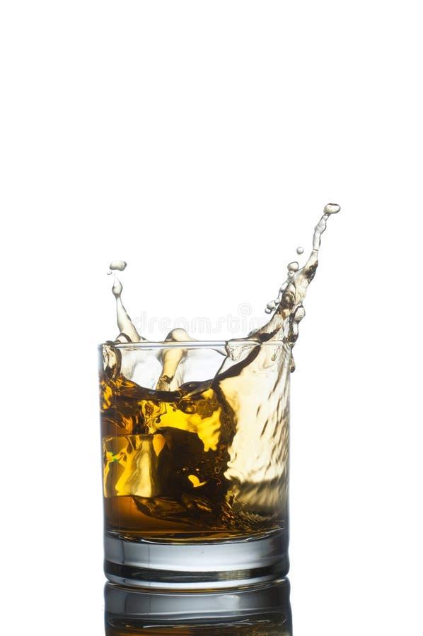 Uísque escocês que espirra fora do vidro isolado sobre foto de stock