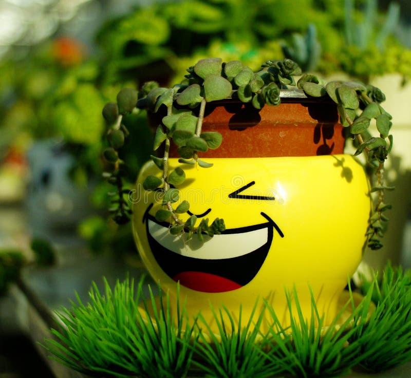 uśmiech wykrzywiony obraz royalty free