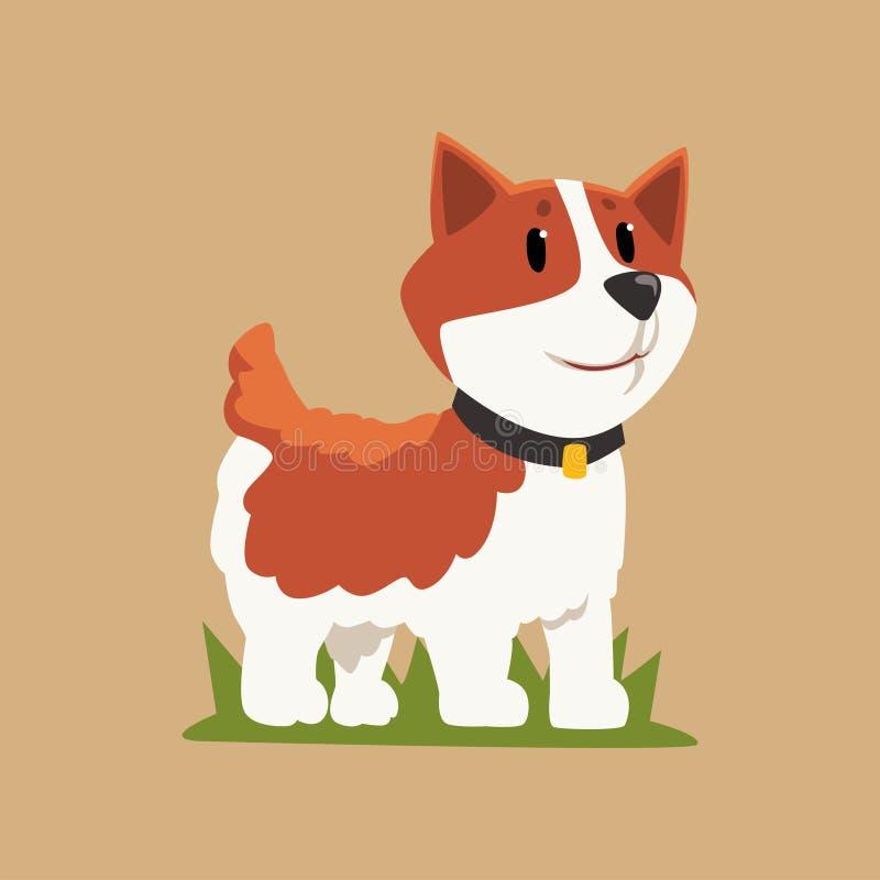 Uśmiechać się Welsh corgi pozycję na zielonej trawie Psi charakter z czarnym kołnierzem Ludzki ` s najlepszy przyjaciel Zwierze d royalty ilustracja