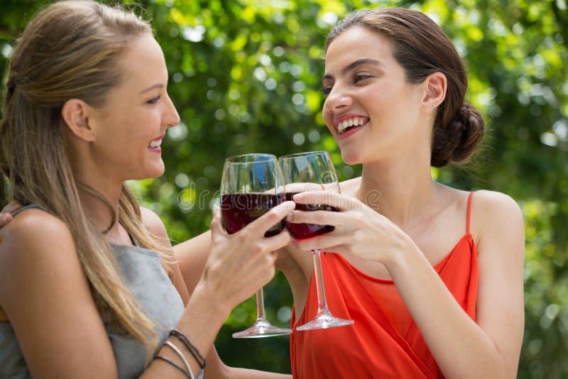 Uśmiechnięci żeńscy przyjaciele wznosi toast czerwonych win szkła przy restauracją zdjęcia royalty free