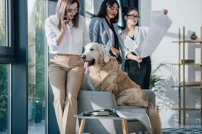 Uśmiechnięci młodzi bizneswomany w formalnej odzieży pracuje zabawę z golden retriever psem i ma w nowożytnym biurze zdjęcia stock