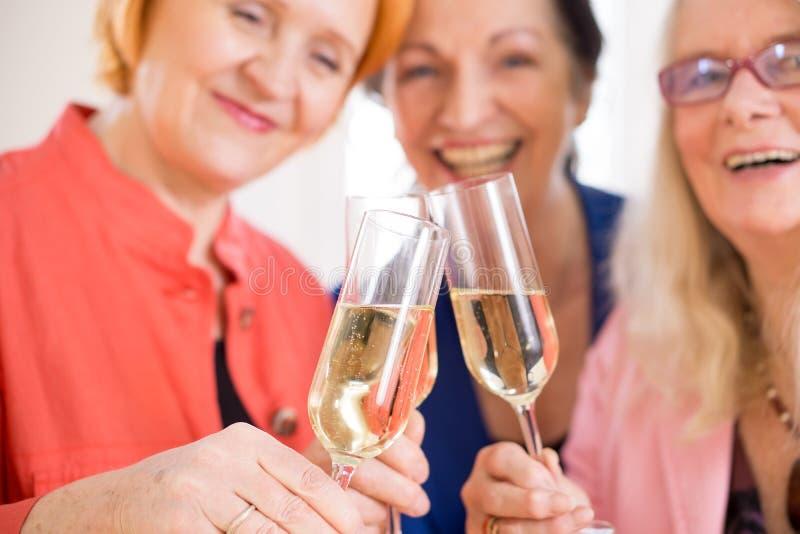 Uśmiechnięci mama przyjaciele Podrzuca szkła szampan zdjęcia royalty free