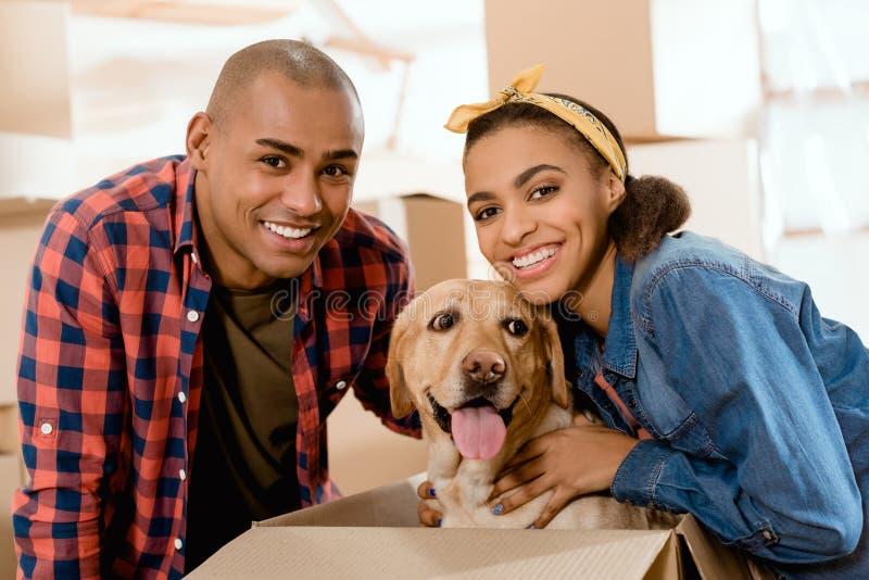 uśmiechnięta amerykanin afrykańskiego pochodzenia para z labradora psem w kartonie obrazy stock