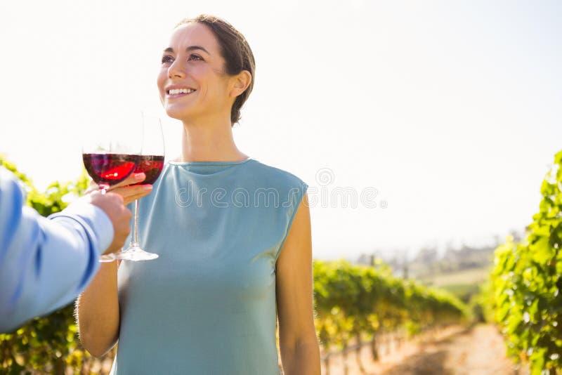 Uśmiechnięta młoda kobieta wznosi toast wineglass z mężczyzna obrazy stock