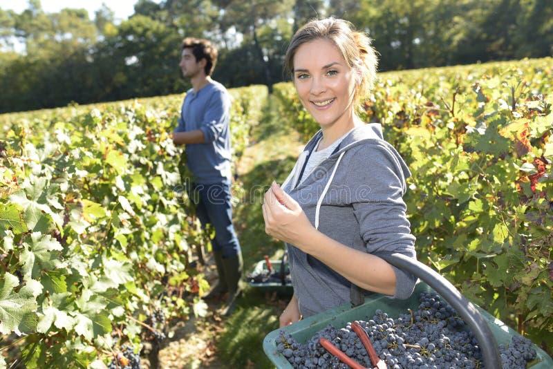 Uśmiechnięta młoda kobieta z koszem winogrona fotografia royalty free