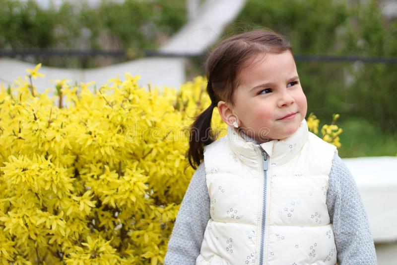 uśmiechnięta mała dziewczynka z ponytails na tle krzak z żółtymi kwiatami zdjęcia stock
