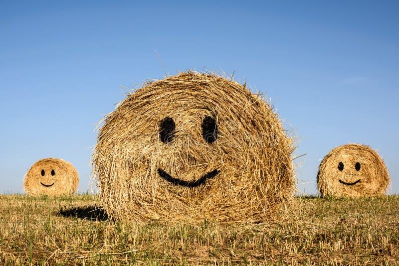 Uśmiechnięta słomiana bela fotografia stock
