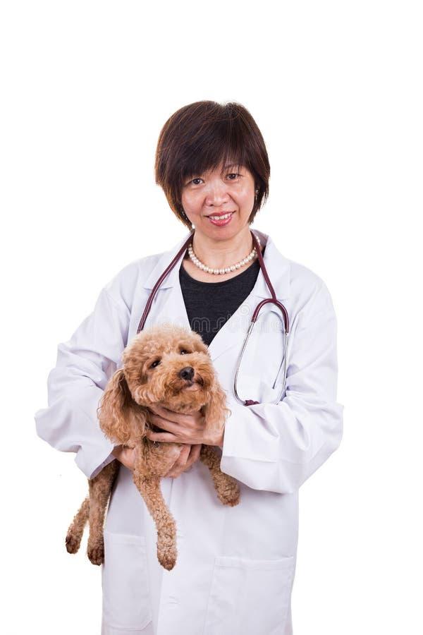 Uśmiechnięty Azjatycki żeński weterynaryjny doktorski przytulenia zwierzęcia domowego pies zdjęcia royalty free