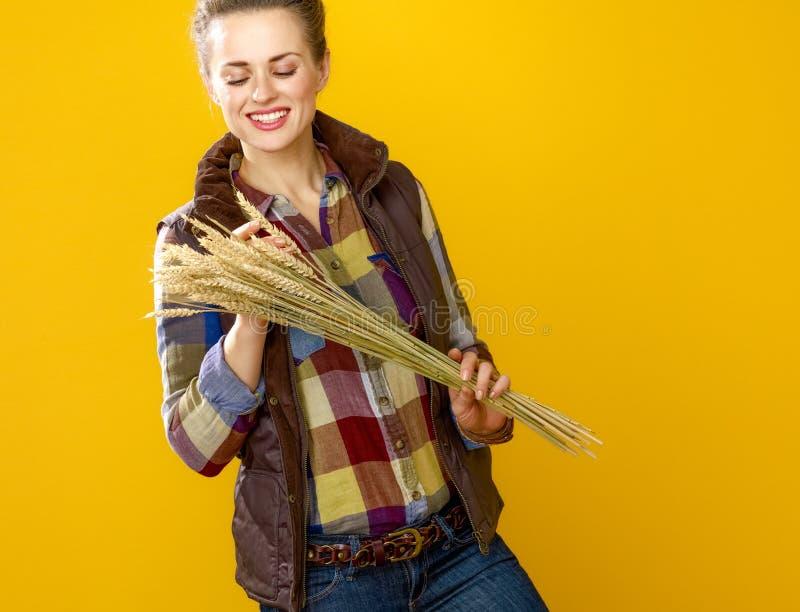 Uśmiechnięty nowożytny kobieta hodowca obserwuje pszenicznych spikelets fotografia royalty free
