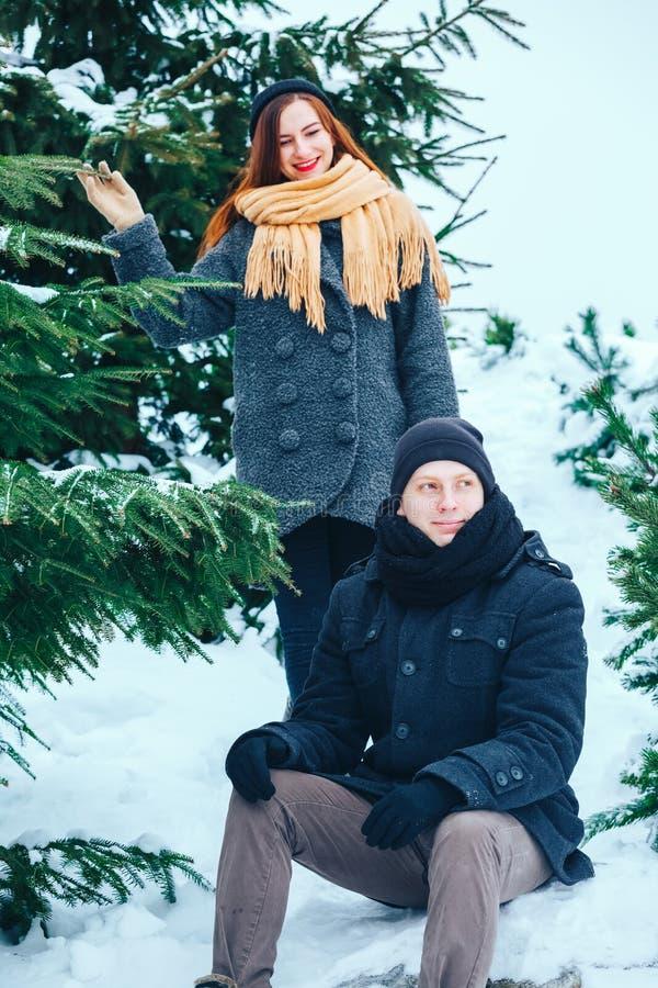 Uśmiechnięty pary odprowadzenie w śnieżnych drewnach wpólnie zdjęcia royalty free