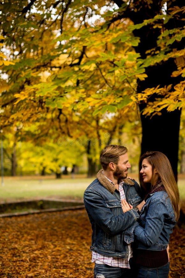 Uśmiechnięty pary przytulenie w jesień parku zdjęcie royalty free