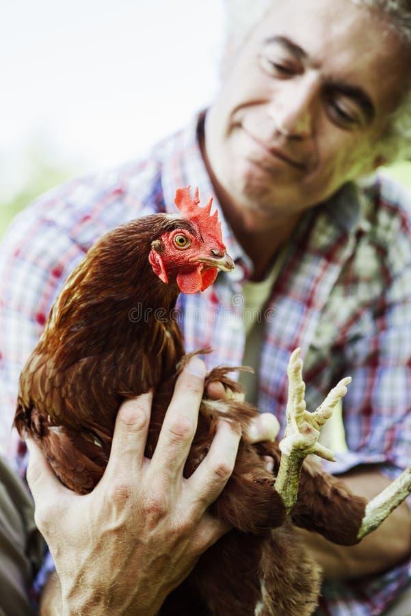 Uśmiechnięty rolnik trzyma kurczaka obraz stock