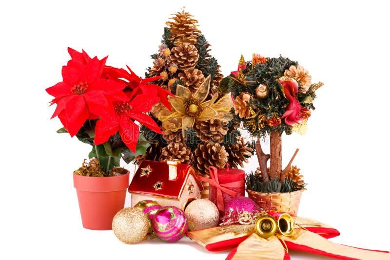 Uświęconi jagodowi kwiaty, choinka i dekoracja, zdjęcia royalty free