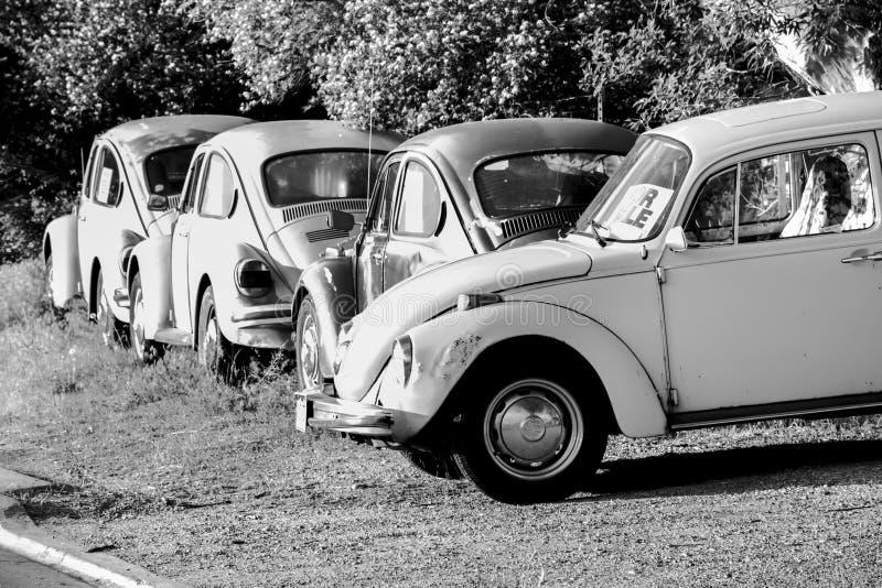 Używać roczników samochody W późnego popołudnia świetle słonecznym fotografia royalty free