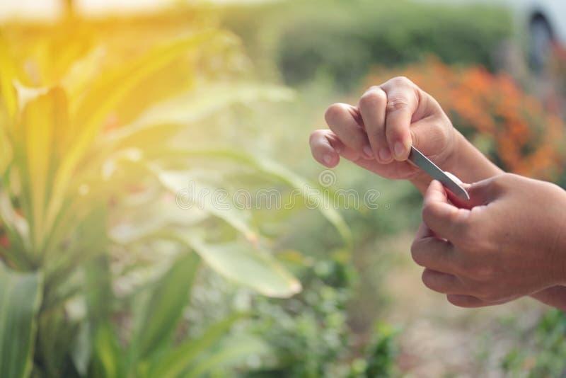 Używa prawa ręka mienia stalowy kartoteka manicure'u gwóźdź dekoracyjny obrazy stock