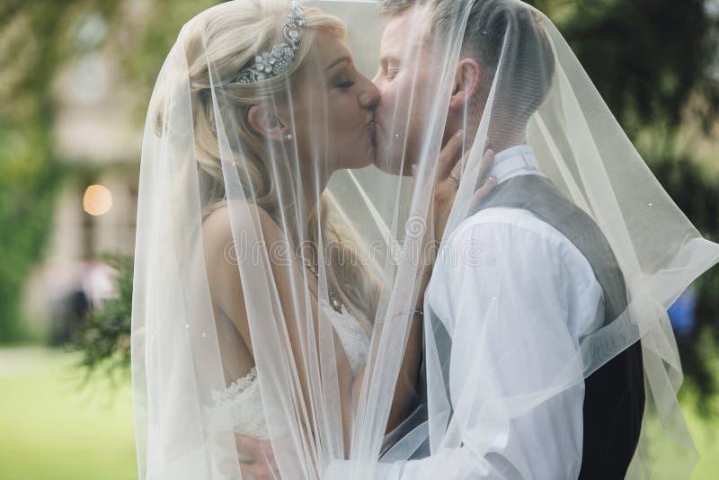 U kunt de bruid kussen stock foto's