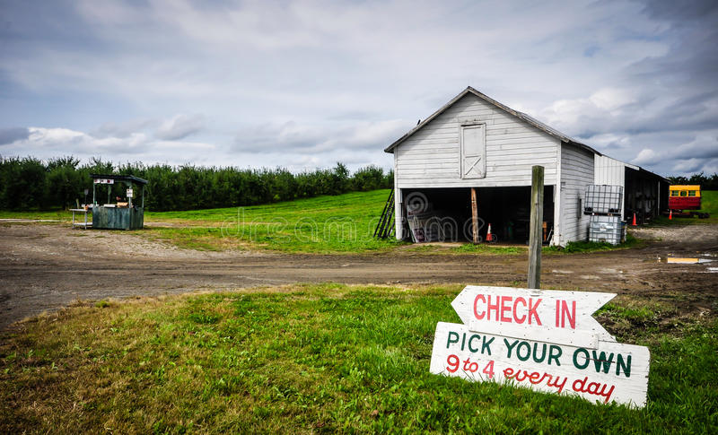 U-Pick Apple Orchard. Pick your own apples, 9 to 4 every day at this Upstate New York orchard. Wooden sign, white barn, and fruit stand shown against a backdrop royalty free stock photos
