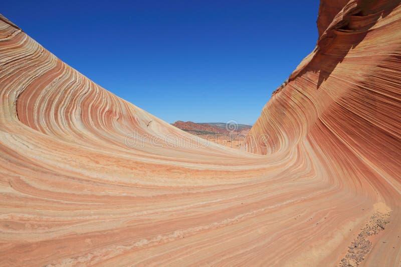 U.S.A., colline coyote/dell'Arizona: Entrata a Wave immagine stock