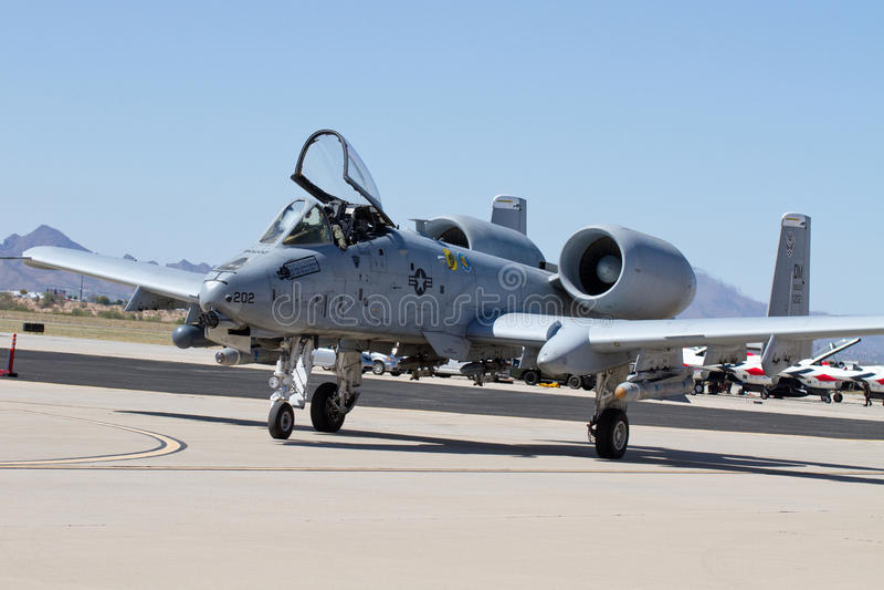 U S Luftwaffen-Warzenschwein stockbild