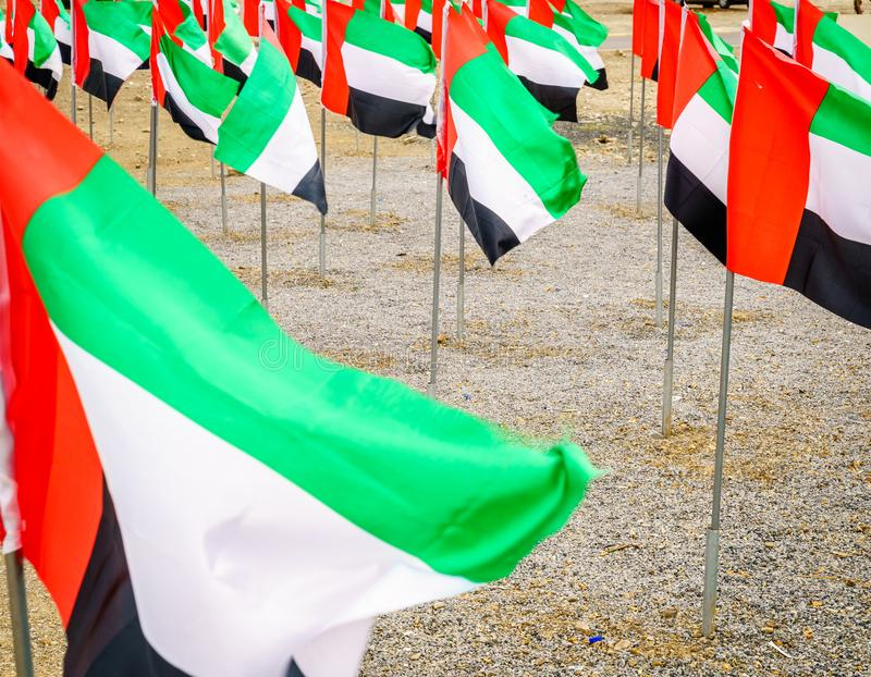 UAE National flags. Display of UAE flags on UAE National Day stock photography
